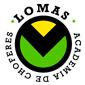 ICONO COMERCIO ACADEMIA LOMAS de ACADEMIAS CHOFERES en VILLA AEROPARQUE