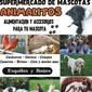 ANIMALITOS de ALIMENTOS PAJAROS en TODO EL PAIS