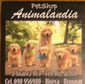 ANIMALANDIA PET SHOP