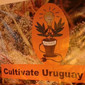 ICONO COMERCIO CULTIVATE URUGUAY GROW de CARPAS CULTIVO INDOOR en CASTRO
