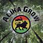 ALIKA GROW