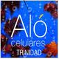 ICONO COMERCIO ALO TRINIDAD de CELULARES en ISMAEL CORTINAS