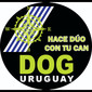 DOG URUGUAY de VETERINARIAS en MONTEVIDEO