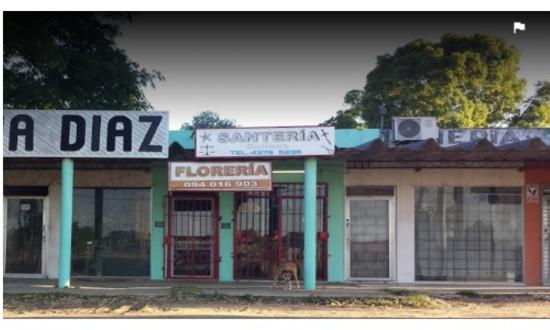 SANTERIA Y FLORERIA SALINAS