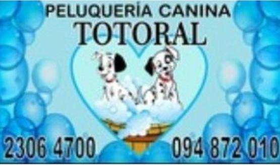 PELUQUERIA CANINA TOTORAL