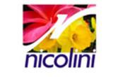 NICOLINI