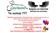 COSTA MASCOTAS