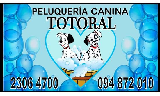 Nuevos Servicios - Peluquería Canina Totoral